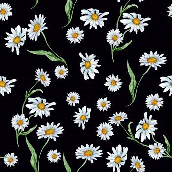 Delicate Daisy