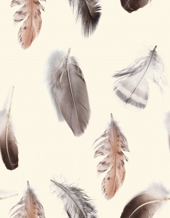 Realistic Feathers