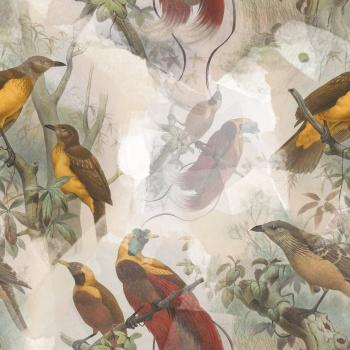 Bird's Dream