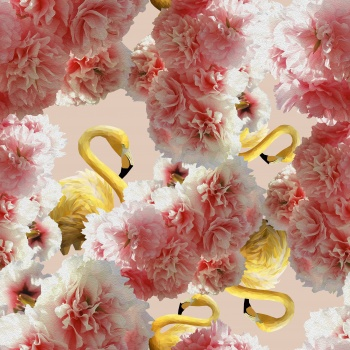 Yellow Flamingos