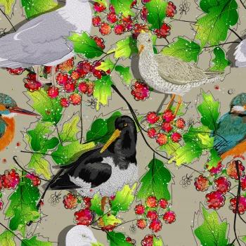 White and Black Birds