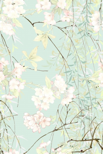 Willow branches, flowers