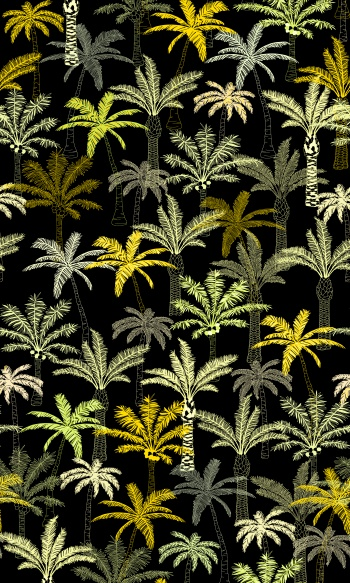 Palm's Night
