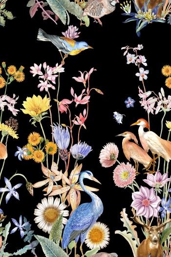 Sika deer, birds, various flowers
