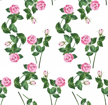 Pure Roses