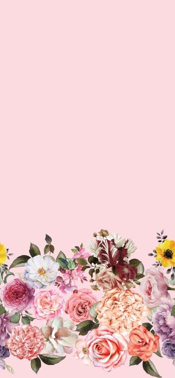 _2_beautiful_roses_
