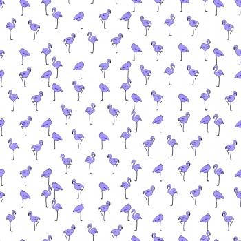 Poultry, ducks, animals