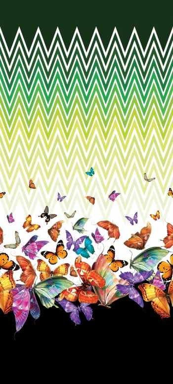 Arrows show to the colorful and beautiful butterflies