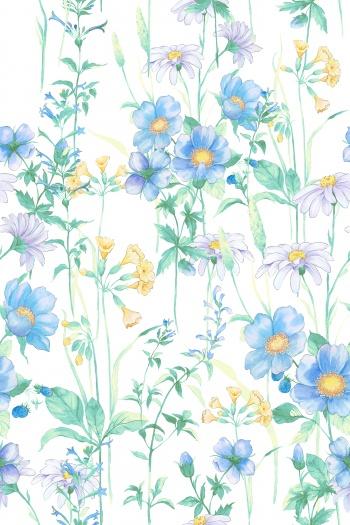Elegant and beautiful flowers