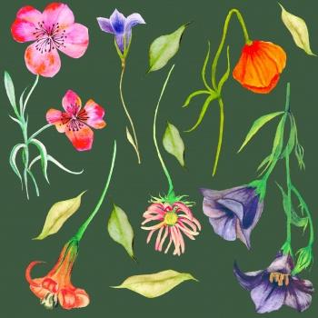 Seamless Botanical Pattern