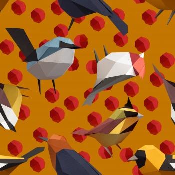 Cubic Birds