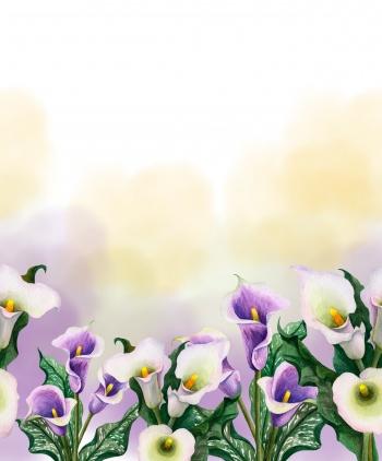 Border-Floral Pattern