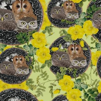 Owls Family Portrait
