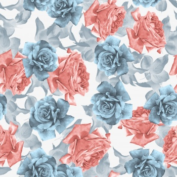 Pink and Blue Roses