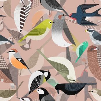 Full of Birds