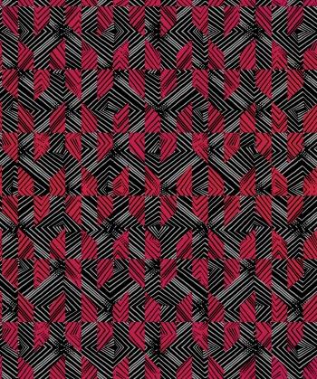 Fuchsia Illusion