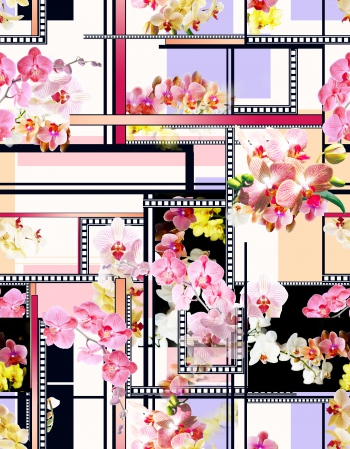 Orchids- Geometric Shapes 2