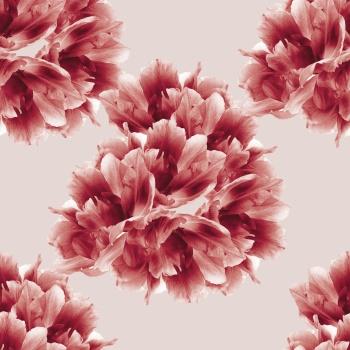 Sensitive maroon flowers