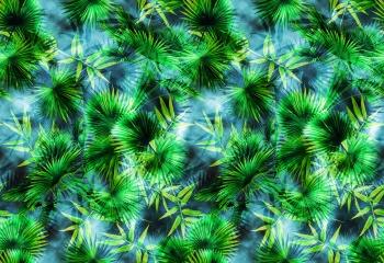Sharp Palms
