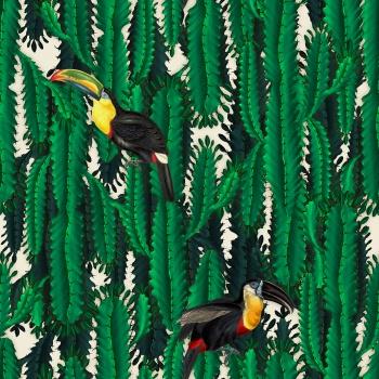 Cactus & Toucan