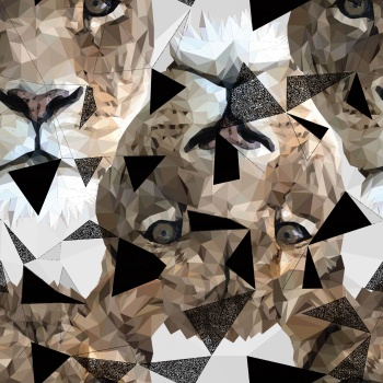 Collage works -Lions