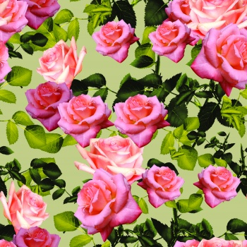 Rose by any other name would smell as sweet