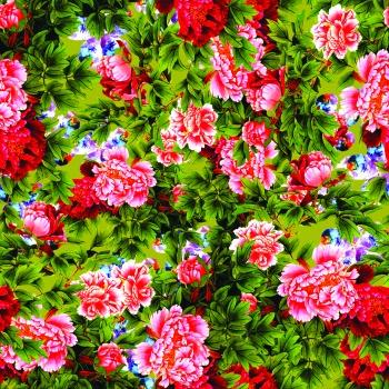 Bright through to garden
