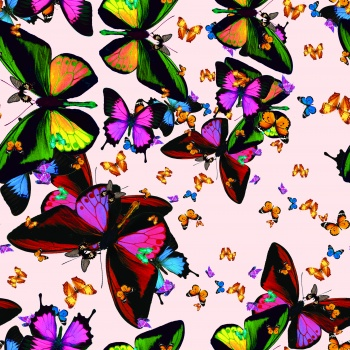 Wonderland`s Butterflies