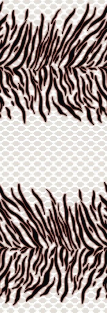_2_zebra