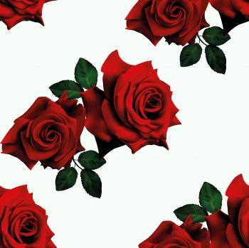 Big Red Roses