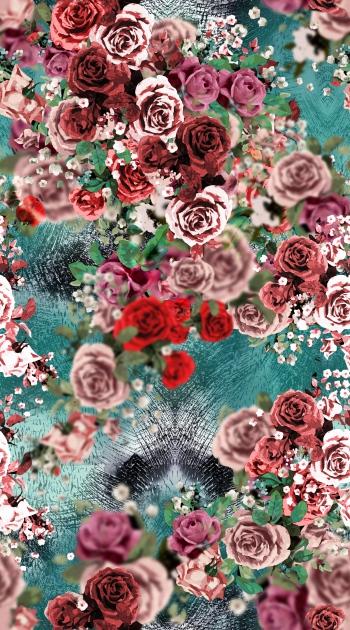 Blurred rose