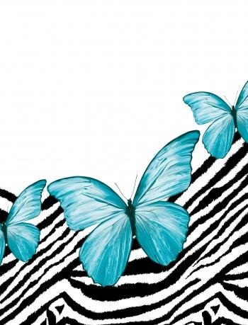 Butterflies and zebras