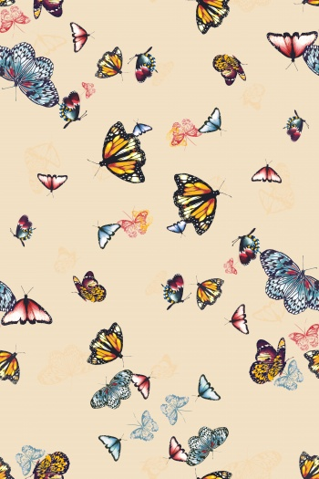 Butterflies flying all over the sky