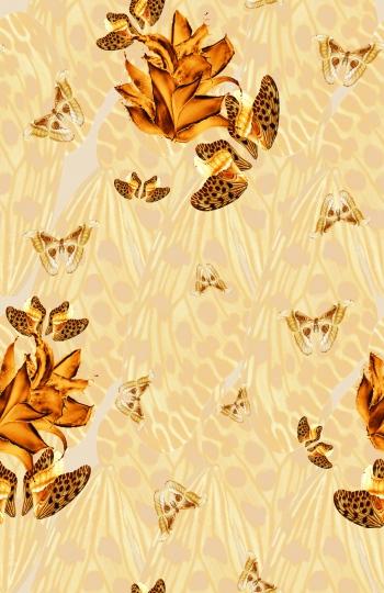 Butterflies_65687