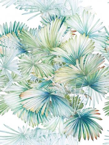 Tropical plants, leaves