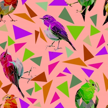 Coloful Shapes Colorful Birds