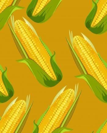 Bag of grain, corn, crops