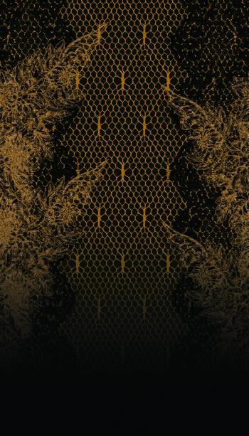 Fishnet&lace