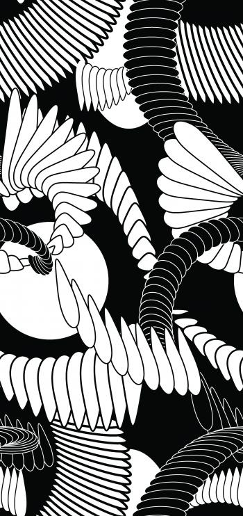 Flabellate motifs