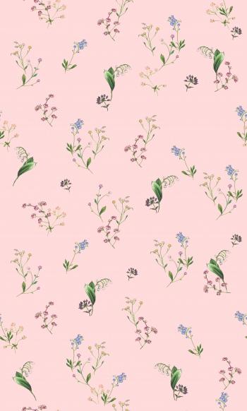 Illustrated Wild Flowers1