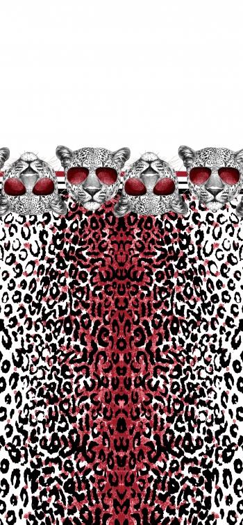 Leopard wears sunglasses
