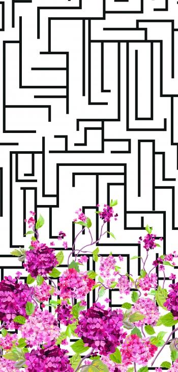 Maze and hydrangeas