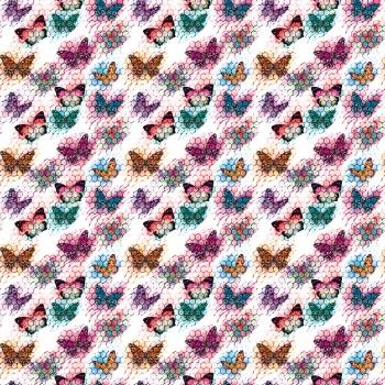 Migrations of butterflies