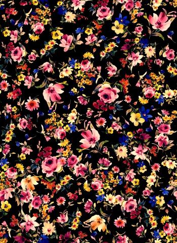 Night`s bright flowers