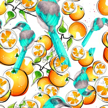 Oranges and Birds