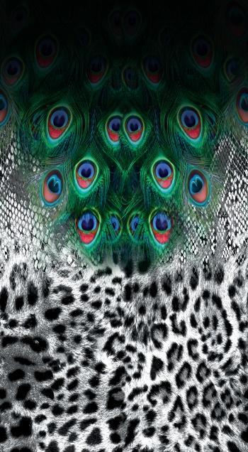 Peacock,leopard&snake
