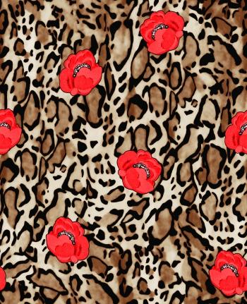Peu de leopard