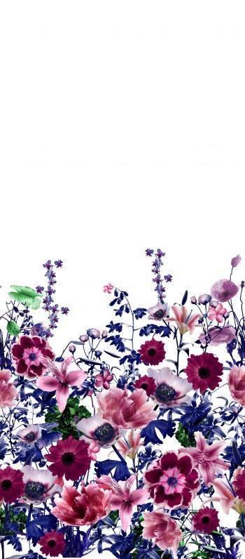 Photographic Flowers