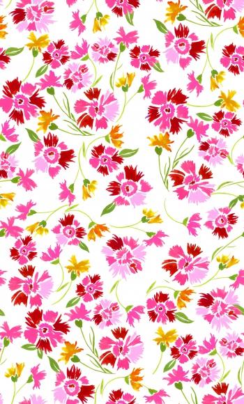 Pink Gillyflower