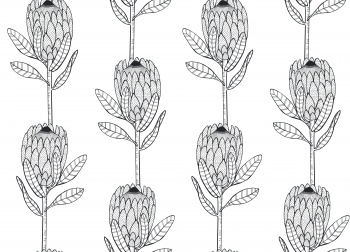 Protea repeat pattern #1